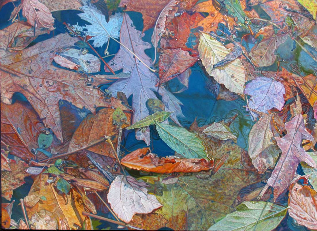leaves drift along the stream